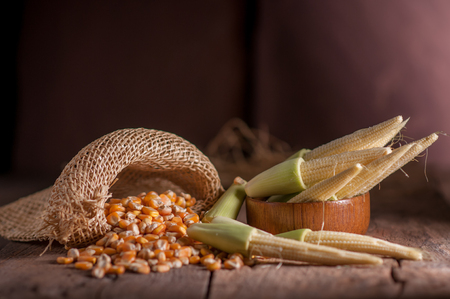 Seed Corn and baby corn on wooden table background.