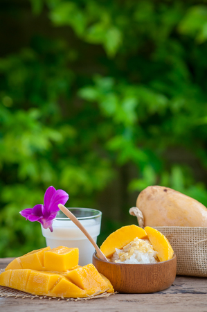 Still life sweet sticky rice with mango (Barracuda mango) and coconut milk. 免版税图像