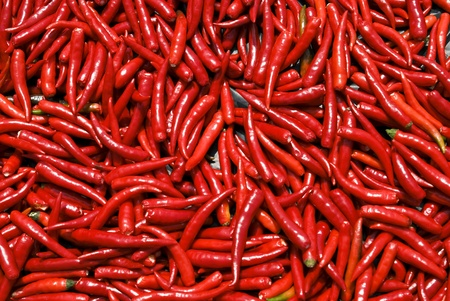 Spicy red Thai pepper chillies photo