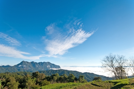 Beautiful Valley, view of Chiang Dao mountain, Thailand photo