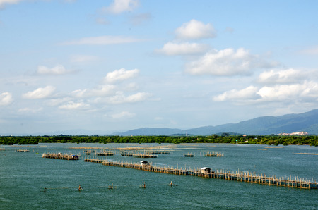 estuary: Beautiful top view of fish agriculture in estuary, Thailand Stock Photo