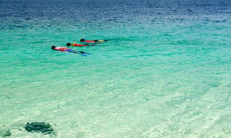skin diving: Tourist snorkeling in clear sea in Lipe Island, Thailand