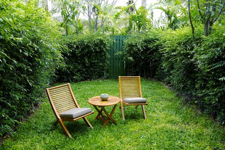 chairs on backyard tropical garden  photo