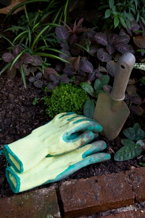 dirty: Dirty Glove in the small garden Stock Photo