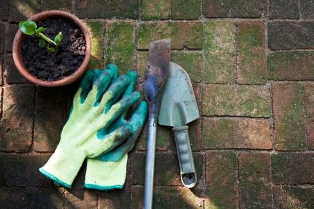 groundbreaking: Image of gardening tools