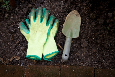 groundbreaking: Image of gardening hobby  Stock Photo