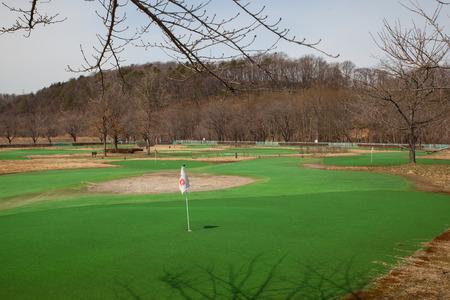 ゴルフのパッティング コース