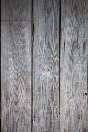 rustic  wood: image of old rustic wood background
