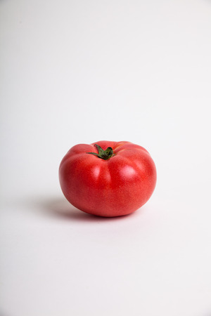 ingradient: red tomato on white background