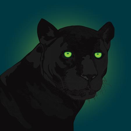 Hand drawn black panther Ilustração