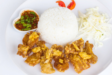 close up food: Close up of Fried pork with garlic and pepper on rice, Thai food style