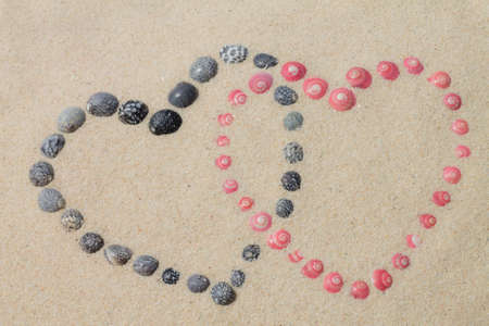 looped hearts from pink and black shells photo