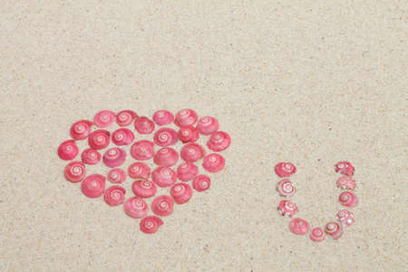 heart made by pink button sea snails  photo