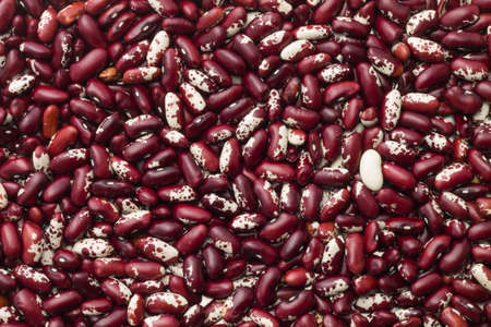 bush bean: red beans texture