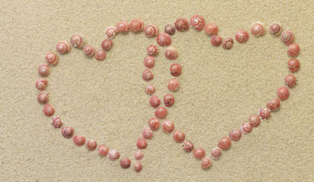 Looped hearts made of pink shells photo