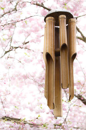 wind chimes: Bamboo Wind Chime with sakura flowers
