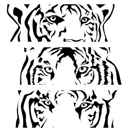 Eye of the tiger, black and white, three faces. Vector illustrator EPS 10