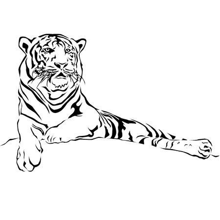Tiger lying on the ground waiting for prey. Vector illustrator EPS 10