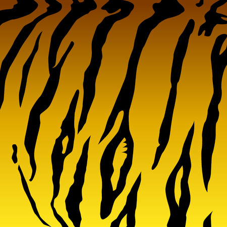Graphic depicting a tiger skin pattern for a background Illustration