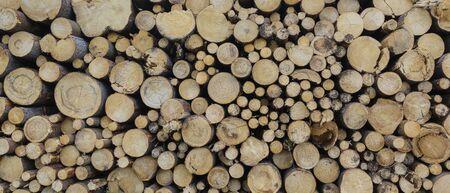 round teak wood stump background, the best photo