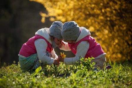 sorelle gemelle carine, abbraccio su un campo di sfondo con fiori gialli, sorelle carine e belle felici che si divertono con fiori gialli in primavera nel parco, vacanze allegre all'aperto, stile di vita sano