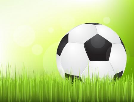 Soccer ball in the grass Vector