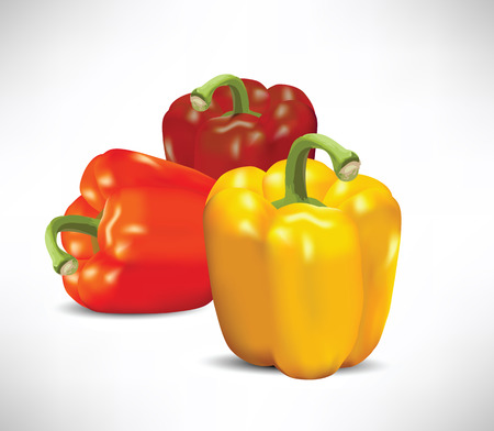 Realistic peppers  vector illustration  Illustration