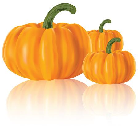 gourd: Three realistic pumpkins