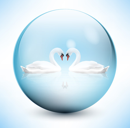 Swans in sphere Vector