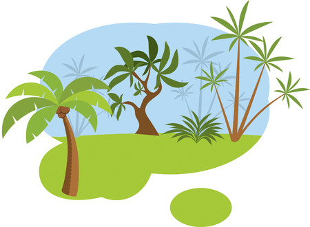 jungle plants: Tropical forest  jungle
