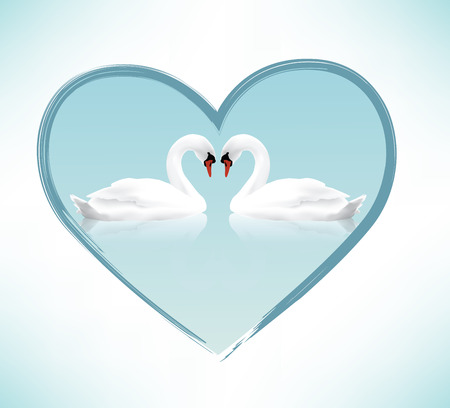 Beautiful swans  Valentine  Vector