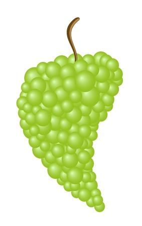 Green grape Stock Vector - 10410691