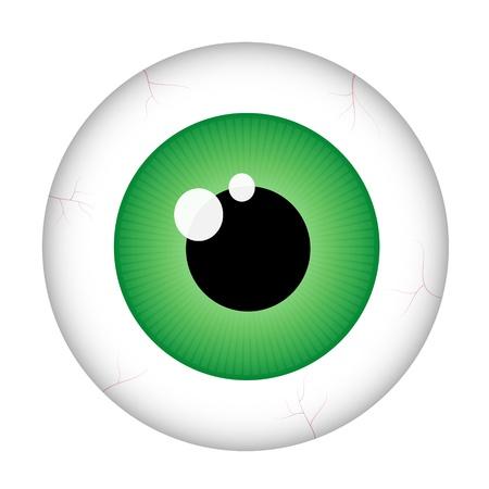 Green eye (macro)  isolated on white background Stock Vector - 11664528