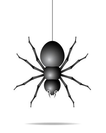 Spider hanging on a gossamer thread Stock Vector - 12498269
