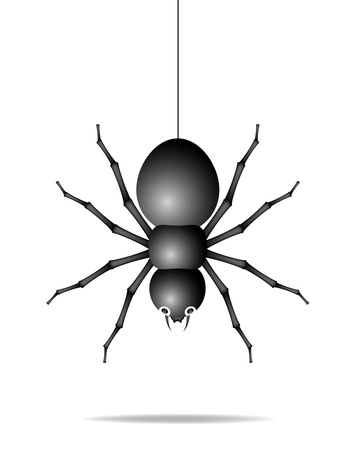 Spider hanging on a gossamer thread Stock Vector - 12498269
