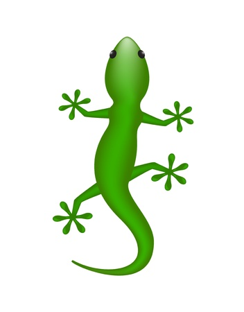 salamandre: L�zard Illustration