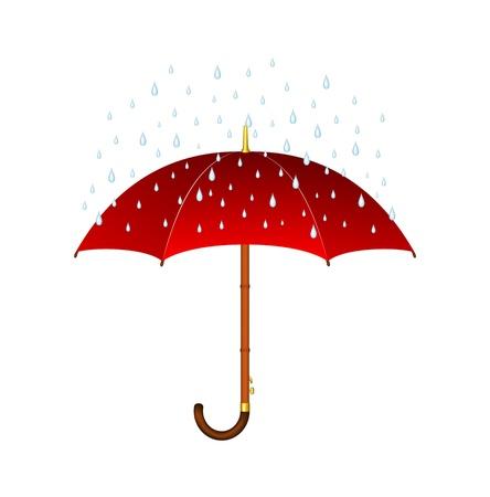 lluvia paraguas: Paraguas y la lluvia