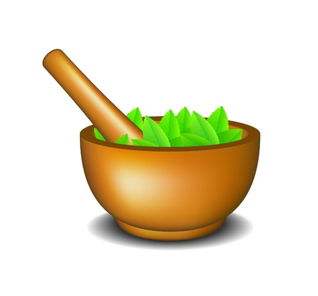 pestle: Mortar with pestle and leaves