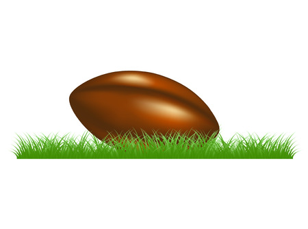 Retro rugby ball lying in grass Vector