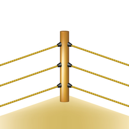 Boxing ring with brown ropes