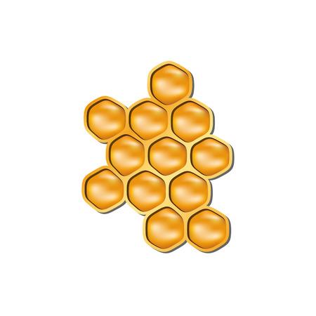 honey cell: Bee honeycomb Illustration