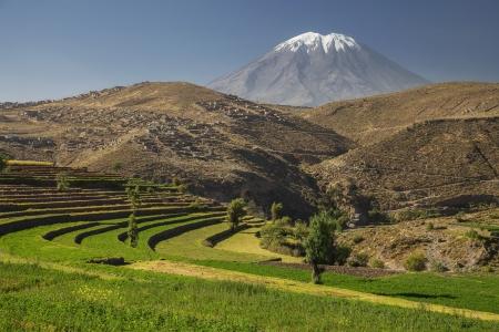 Inca s gardens and volcano Misti, Arequipa, Peru