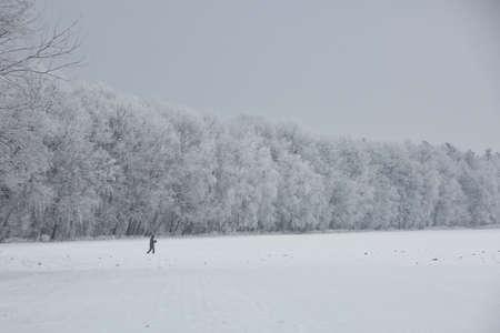 Gorgeous winter landscape with snow and fog, Pardubice, Czech republic.