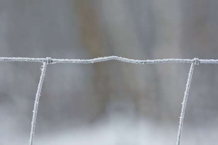 Frost on the iron grid macro. Beautiful winter concept background. Close-up of a frozen iron fence.