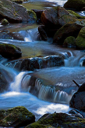 The forrest stream in the middle stones with moss Stock Photo