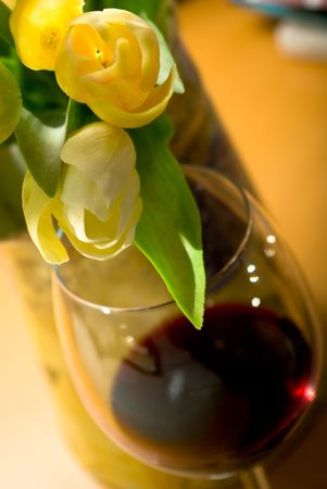 redwine: glass red wine and puget tulip