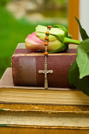 jesus rose: still life