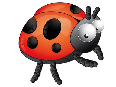 Ladybird Stock Vector - 7742787