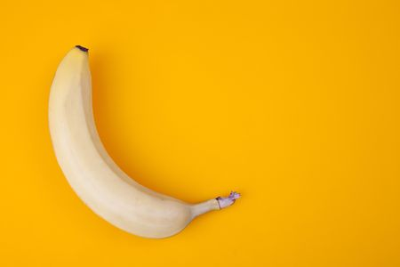 the yellow banana on color background photo