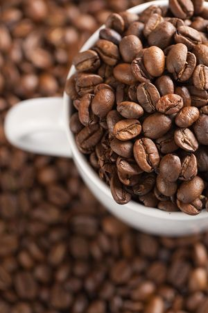 photo shot of coffee beans with white cup photo